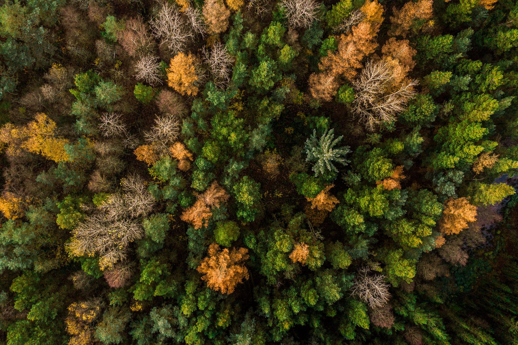 Luftfoto fra fotografen i Herning