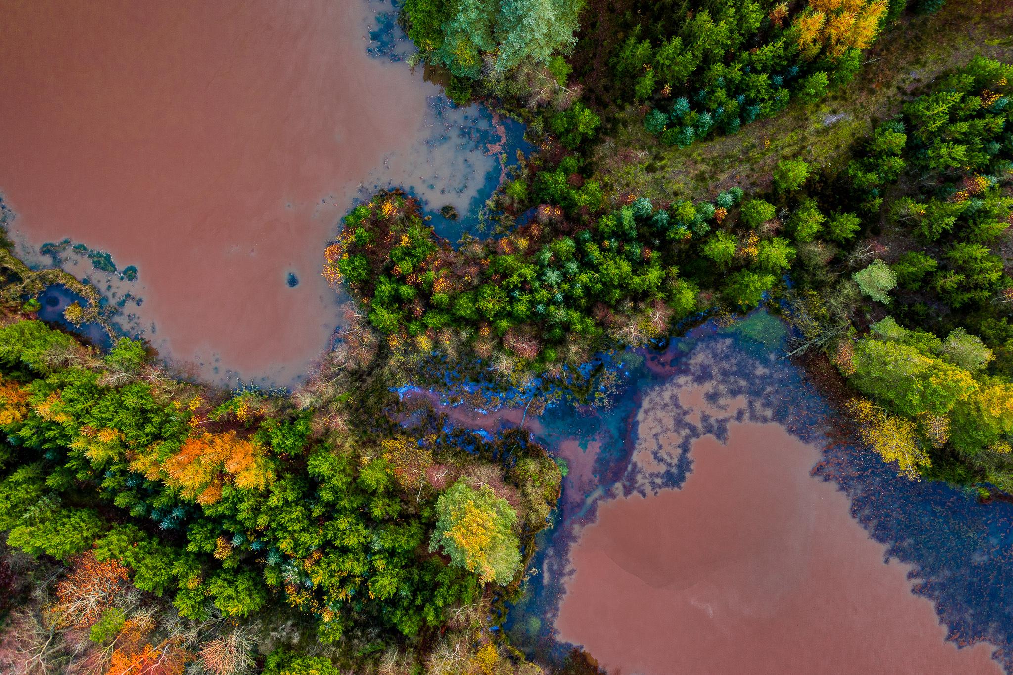 Drone foto af træer og vand