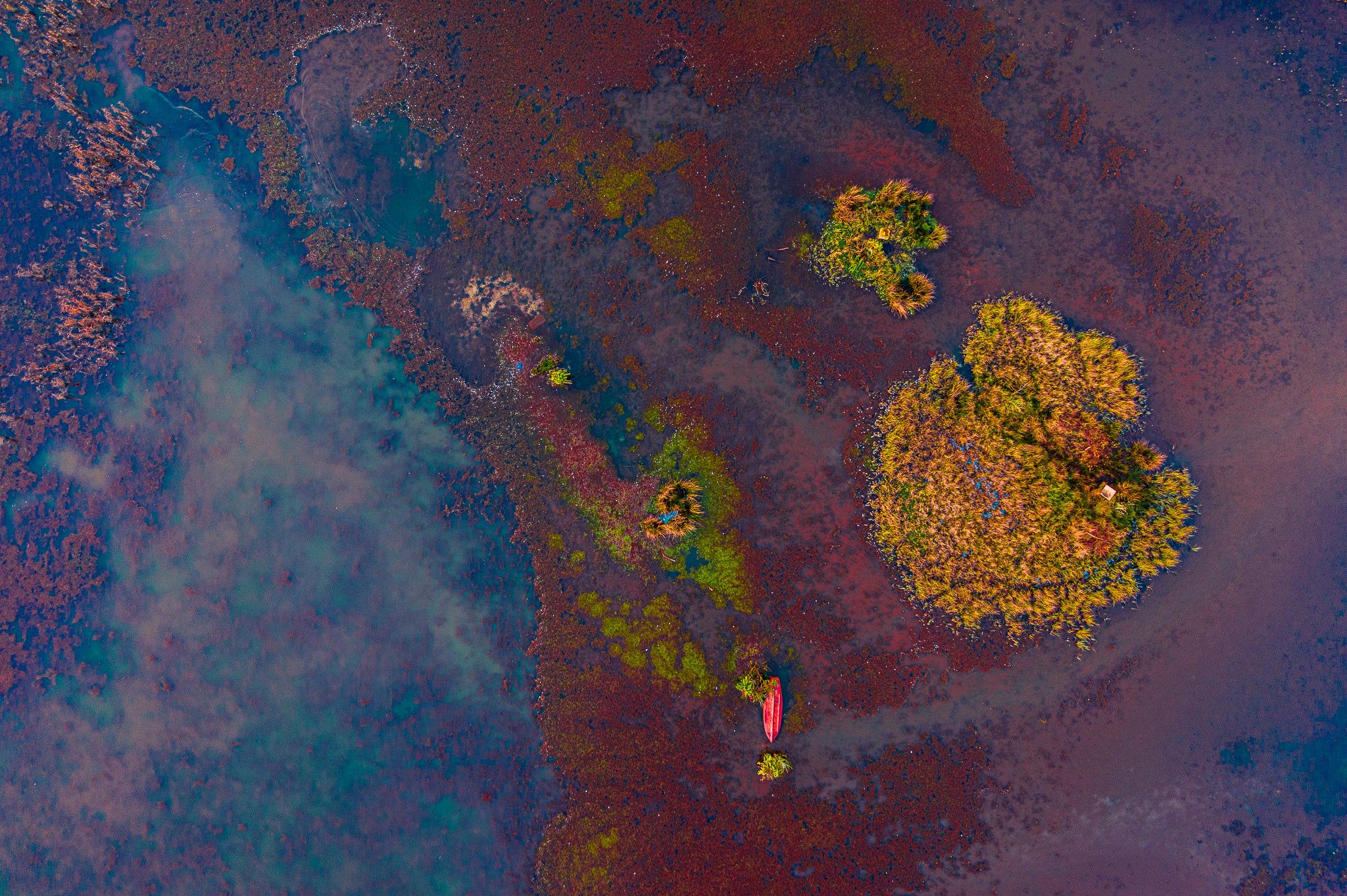 Båd - efterår - farver - drone - fotograf